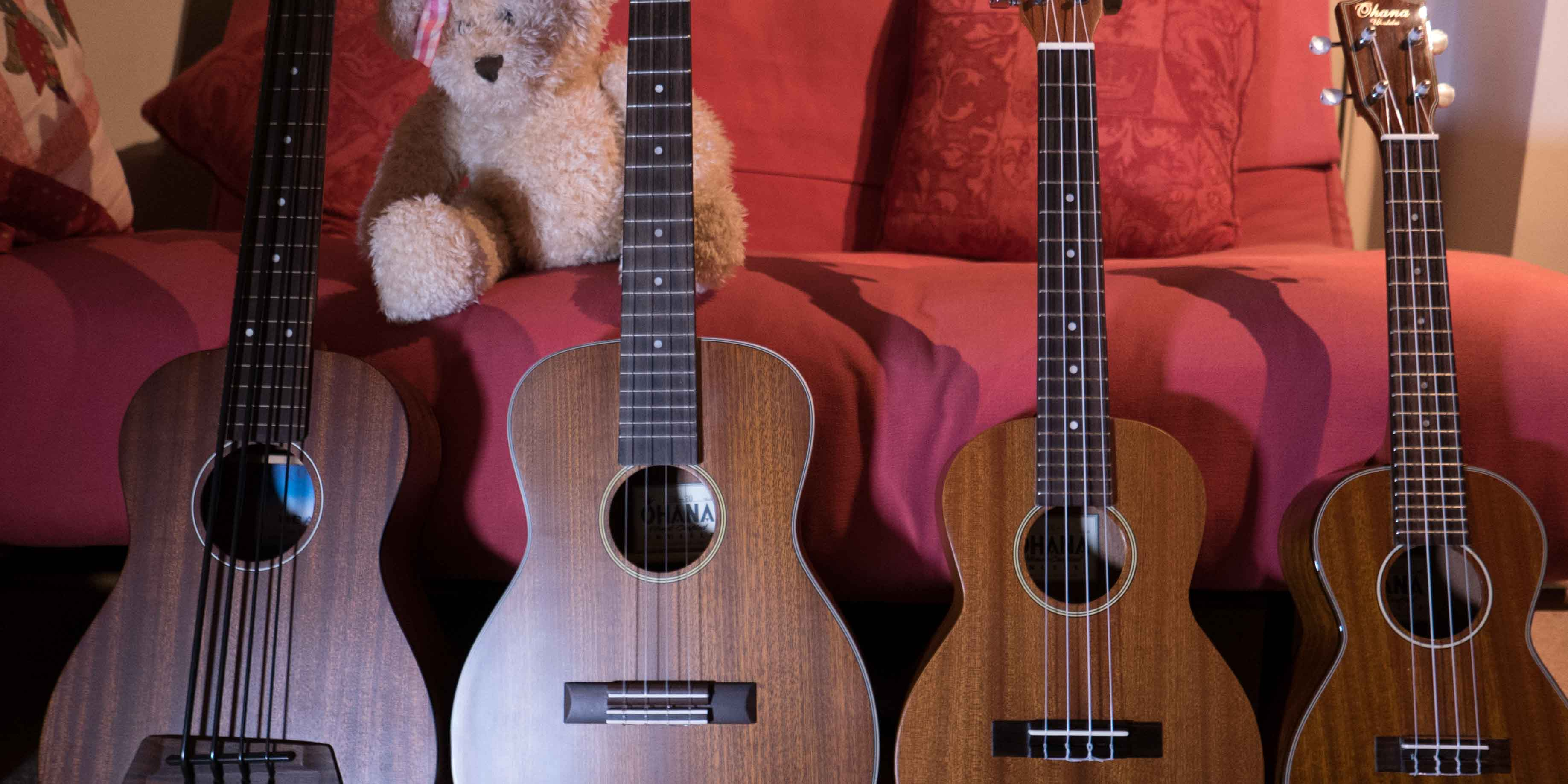 4 Ukuleles and Teddy